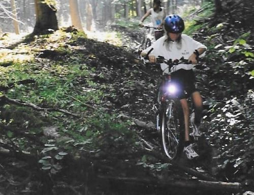 A beginners guide to mountain biking