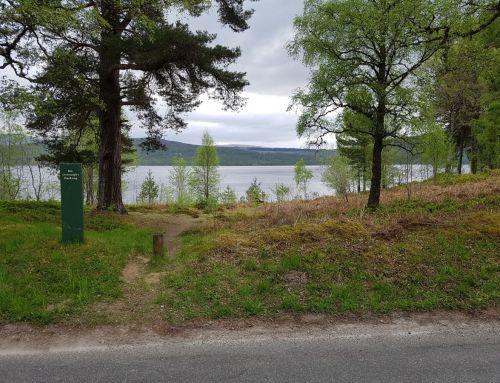 Guest Post – Etape Caledonia by Ken