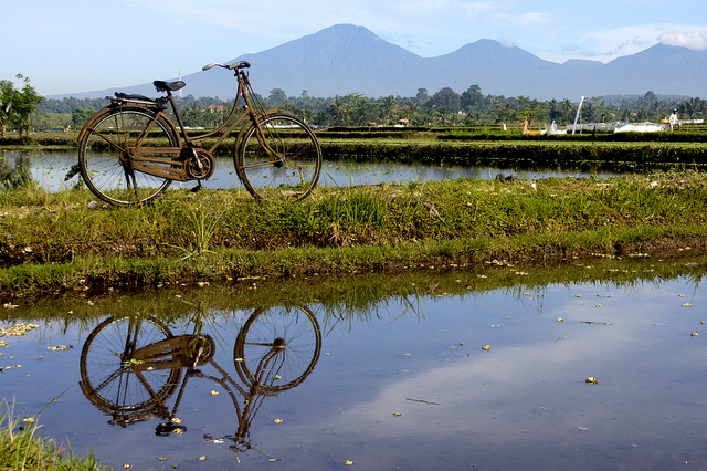 A Cycling Trip To Bali